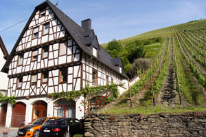 click to enlarge Bacharach, loreley, castle, Germany, Travel, agency, agent, festival, ticket, package, lodge, guide, reservation, planner, UNESCO heritage, information, tour, advisory, cruises, wine, riesling, tourism, bacchus, hotel, holiday, hiking, history, rhine, map